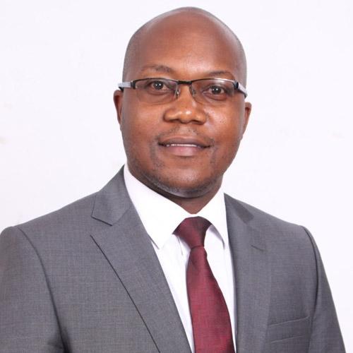 David Mudzengi